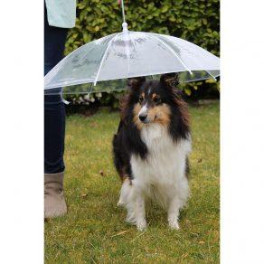 Kišobran za pse s vodilicom