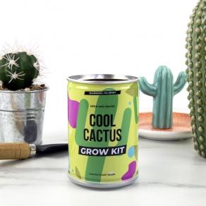 Gift Republic - Poklon limenka za uzgoj - kaktus